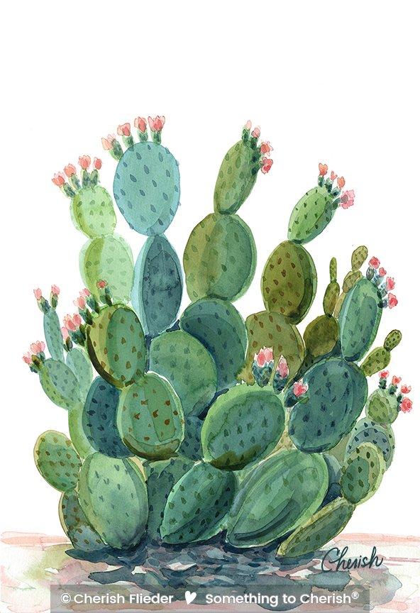 Desert C1709-02 Desert Cactus Bloom © Cherish Flieder
